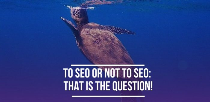 To SEO or Not To SEO: That is the Question!